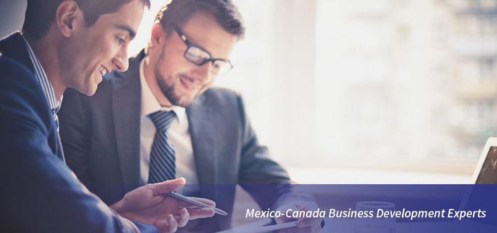 Mexico Canada Business Development Experts